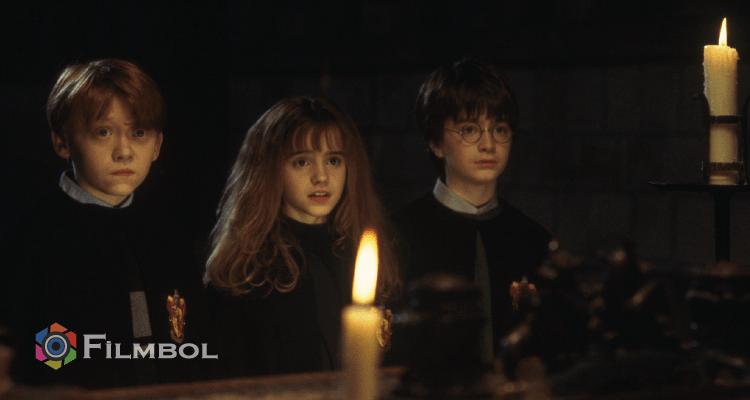 Harry Potter ve Felsefe Tasi